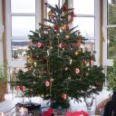 quierschied-tannenbaum.jpg